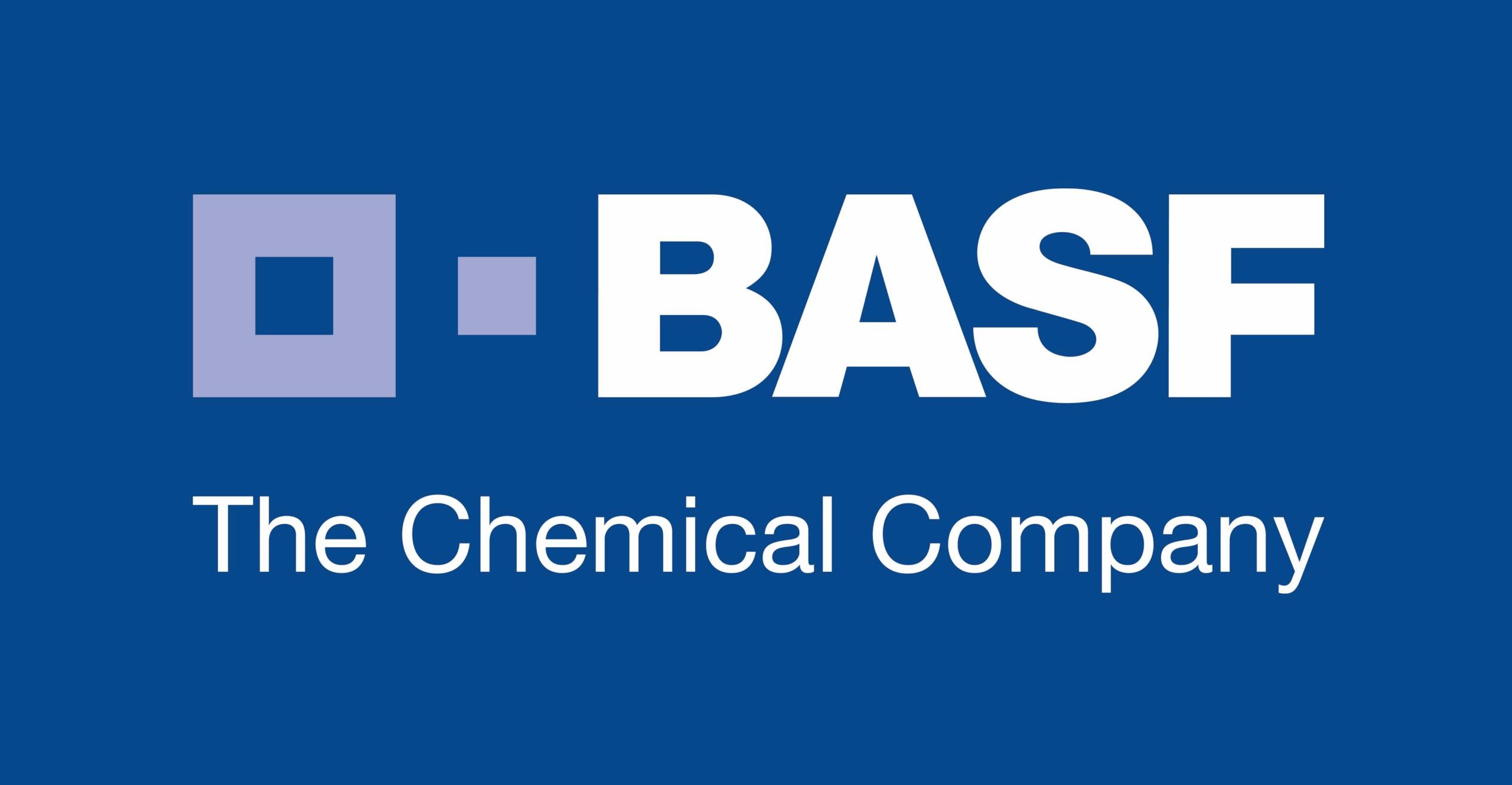 BASF Lay3rs